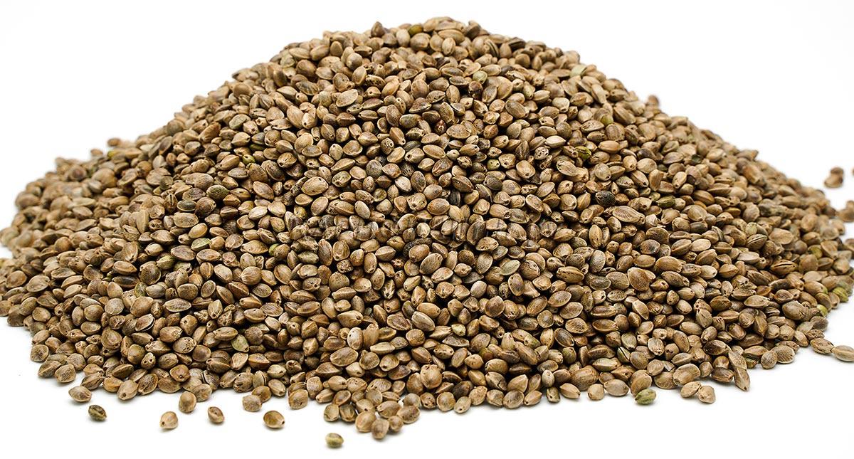 Украина куплю семена конопляные наказание хранение конопли за какое