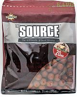 Бойлы Dynamite Baits SOURCE | ИСТОЧНИК 1kg