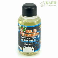 Fun Fishing Aromes Liquid 50ml WILD STRAWBERRY - Ароматизатор КЛУБНИКА